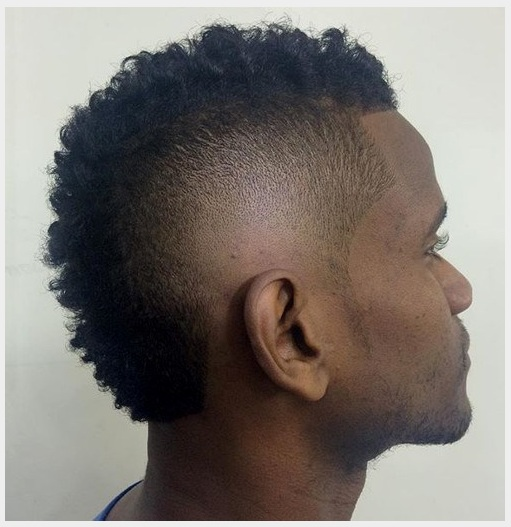 Fade Shape with Natural Curls
