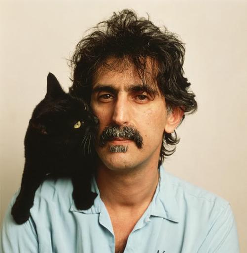 2 The Zappa