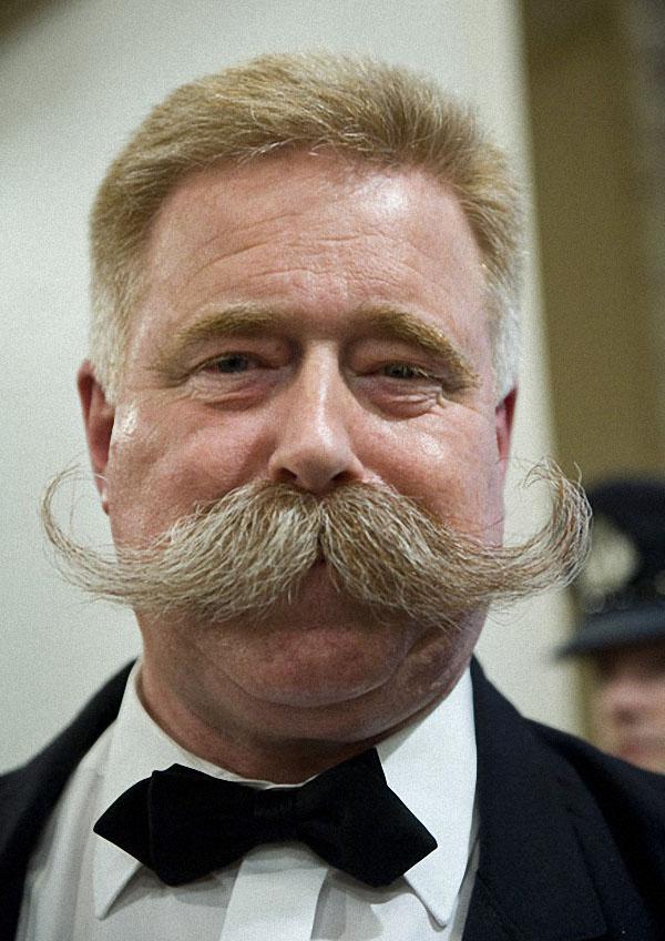 King size handle bar mustache