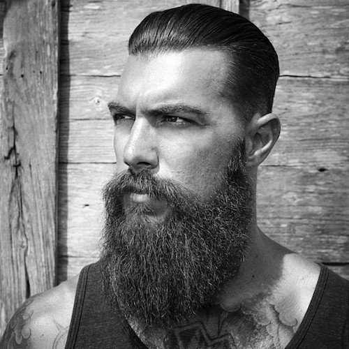 facial hair best 20 hairstyles for men with beard in. Black Bedroom Furniture Sets. Home Design Ideas