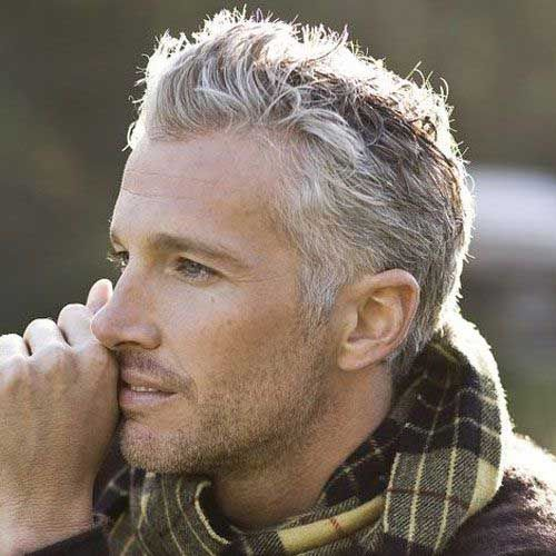15 Ideas About Hot Silver Foxes Grey Haired Men Atoz Hairstyles