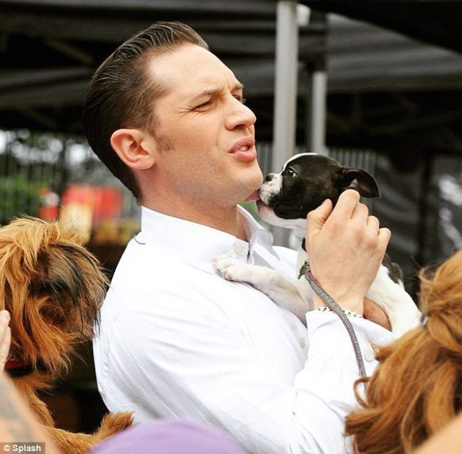 The Tom Hardy Dapper Hairstyle