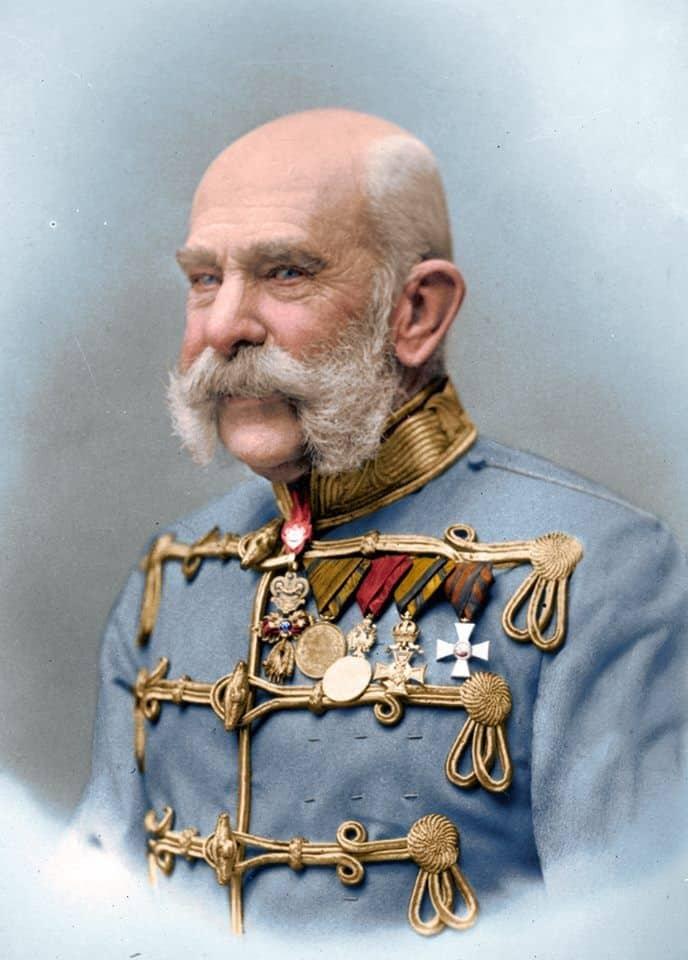 03.Franz Josef Patchy Beard Style