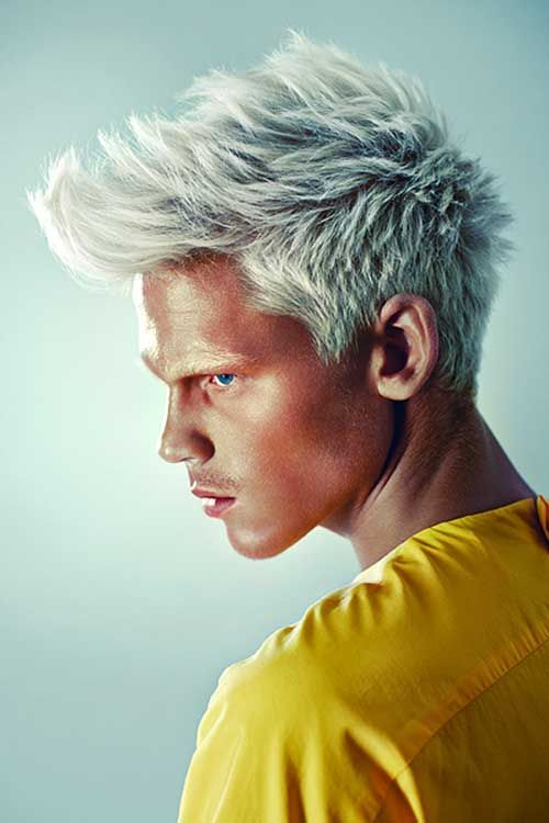 10 Great Haircuts For Guys With White Hair - How to Dye and ...