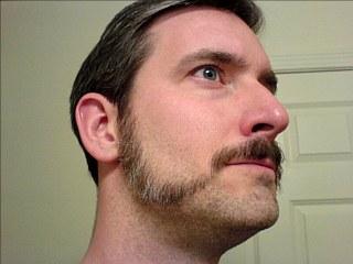 A La Souvarov Patchy Beard Style