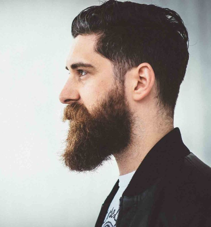 The Bold Long Beard Style