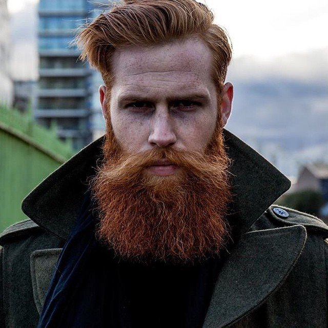 Full Ginger Beard with Long Mustache