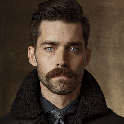 Chestnut Patchy Beard with Pencil Mustache
