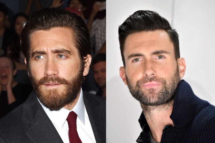 Beard Shape and Style for Rectangle Faces: