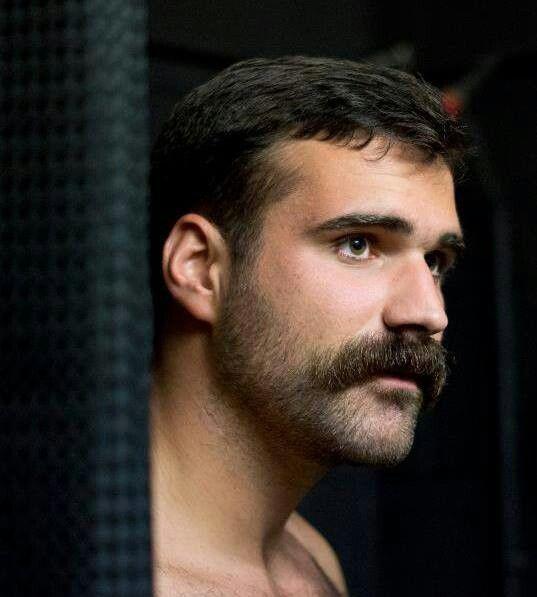 Walrus moustache with a half grown beard
