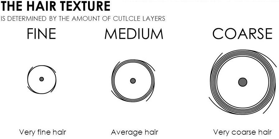 hair texture chart: fine, medium and coarse
