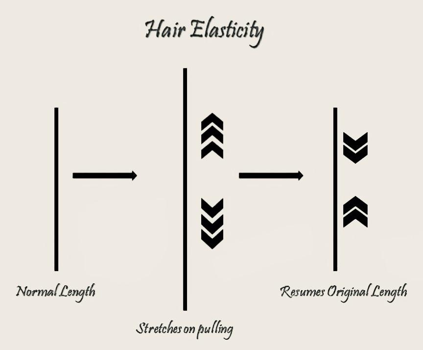 Hair Elasticity