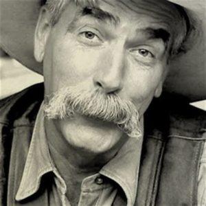 Walrus Moustache