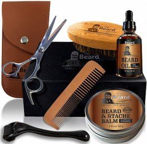 beard legacy beard kit