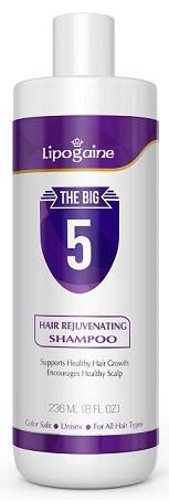 Lipogaine Big 5 Hair Stimulating Shampoo